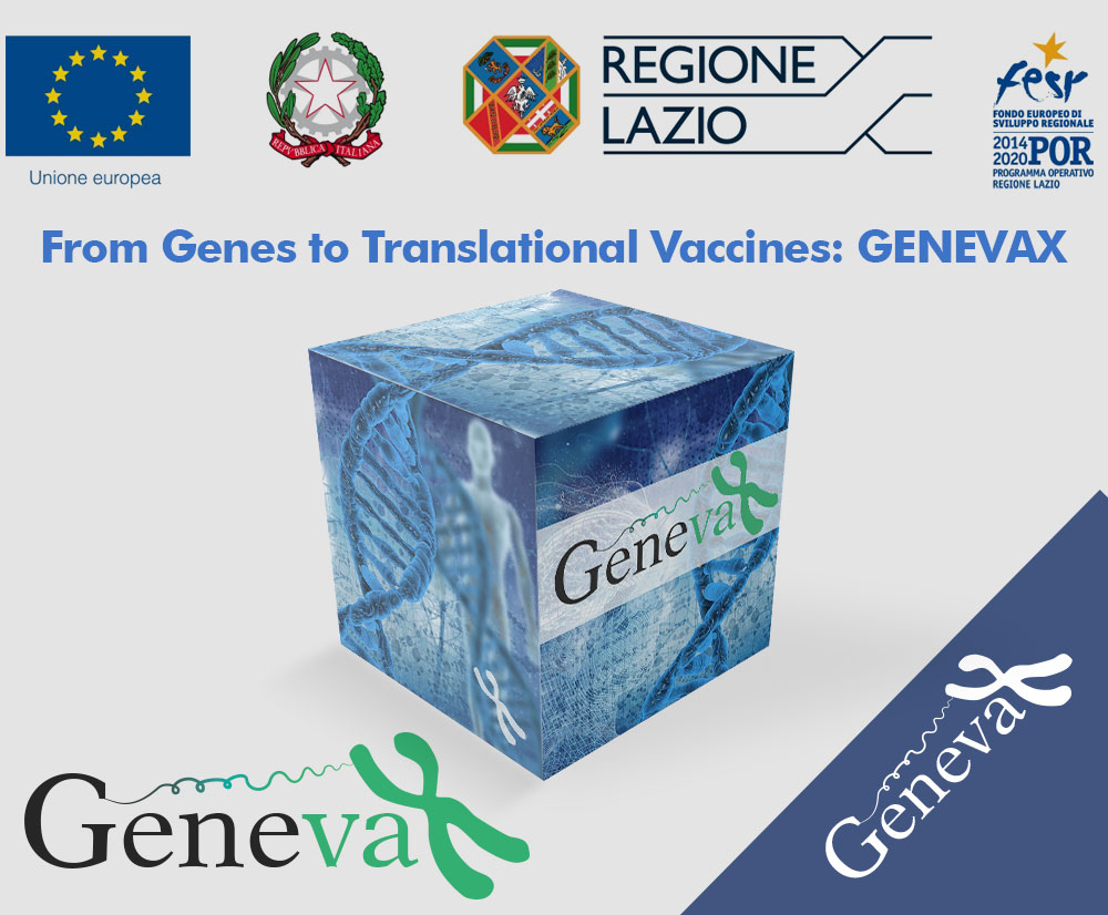 From Genes to Translational Vaccines: GENEVAX